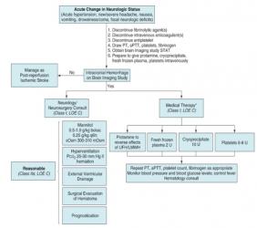 Dịch tễ học và chiến lược xử trí biến chứng xuất huyết ở bệnh nhân mạch vành cấp (P.3) - Chiến lược điều trị