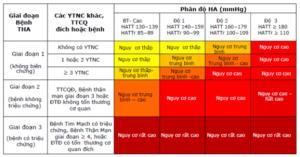 Khuyến cáo chẩn đoán và điều trị tăng huyết áp của Hội tim mạch/ phân hội tha Việt Nam 2018 có những điểm khác biệt gì so với các khuyến cáo quốc tế Acc/Aha 2017 và Esc/Esh 2018 (P.1)