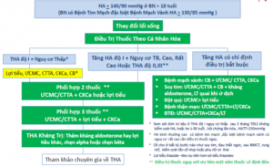 Khuyến cáo chẩn đoán và điều trị tăng huyết áp của Hội tim mạch/ phân hội tha Việt Nam 2018 có những điểm khác biệt gì so với các khuyến cáo quốc tế Acc/Aha 2017 và Esc/Esh 2018 (P.2)
