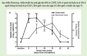 Vai trò virus và vi khuẩn không điển hình trong nhiễm trùng hô hấp cấp - Role of virus and atypical pathogens in acute respiratory infection