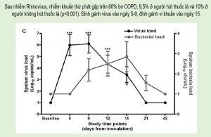 Vai trò virus và vi khuẩn không điển hình trong nhiễm trùng hô hấp cấp - Role of virus and atypical pathogens in acute respiratory infection