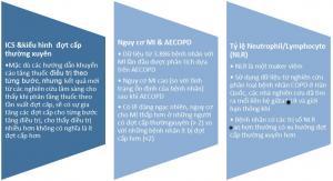 Các yếu tố nguy cơ và phòng ngừa đợt cấp COPD