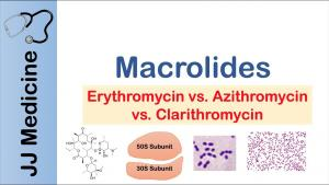 Kháng sinh macrolide để phòng ngừa cơn kịch phát bệnh phổi tắc nghẽn mạn tính: Chúng ta đến đó chưa?